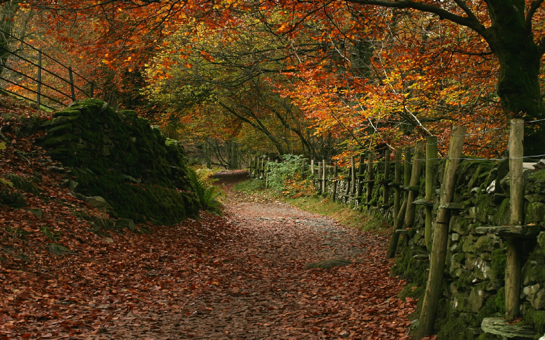 Autumn is here again |...