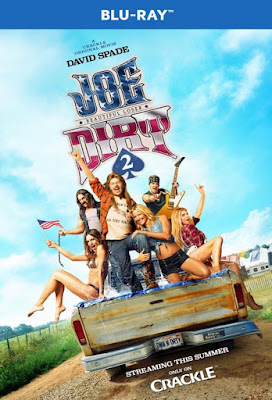 Joe Dirt 2 Beautiful Loser 2015 BD25 Latino