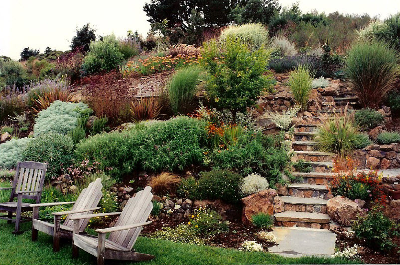 Steep Slope Landscaping On a Hillside