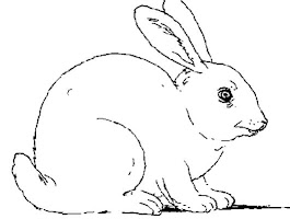 Cute Bunny Rabbit Coloring Pages