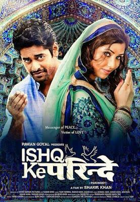 Ishq Ke Parindey 2015 Hindi WEB HDRip 480p 300mb