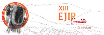 XIII EJIP
