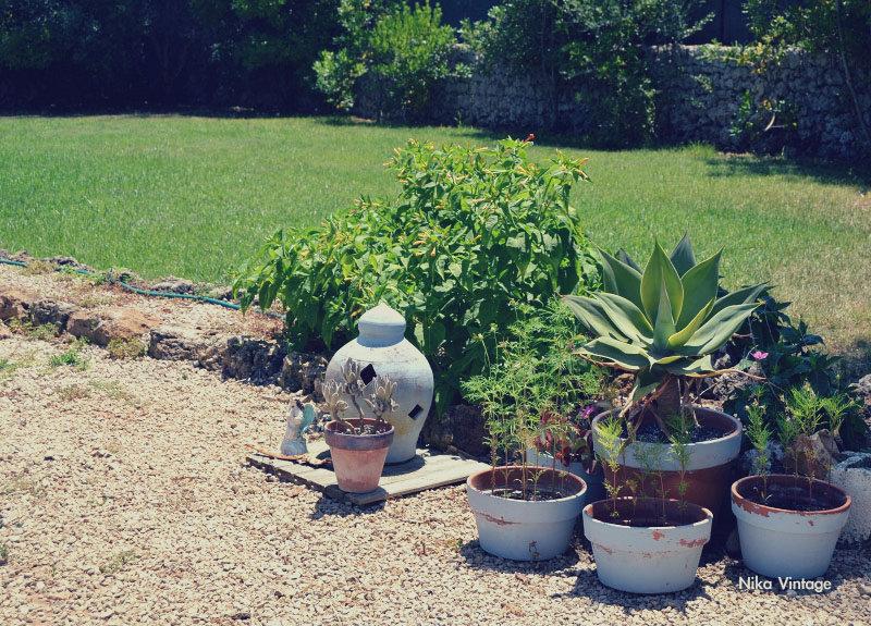 hoy compartimos, blog hop, jardin, menorca, vintage, decoracion,