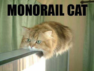 Monorail Cat