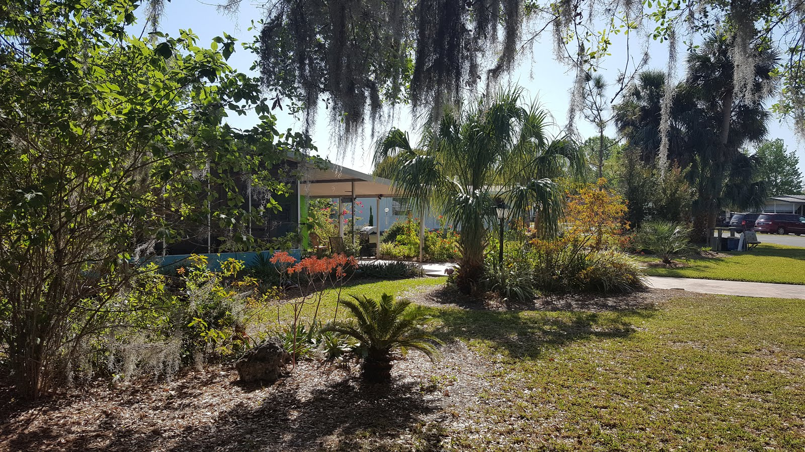 Florida Garden Winter 2016