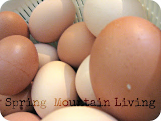 ways to replace eggs at spring mountain living