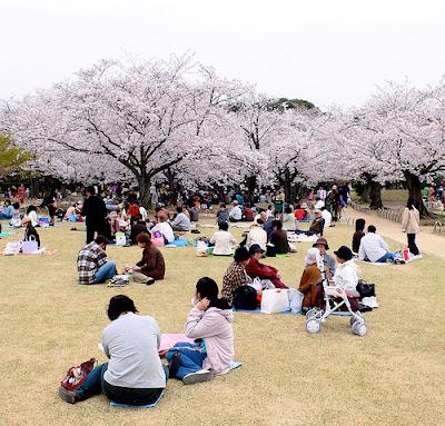 ALASAN Orang Jepang Sulit Belajar Bahasa Asing