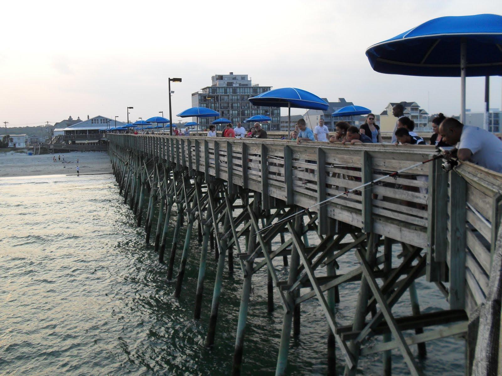 Myfwbs No Shark Fishing Garden City Pier
