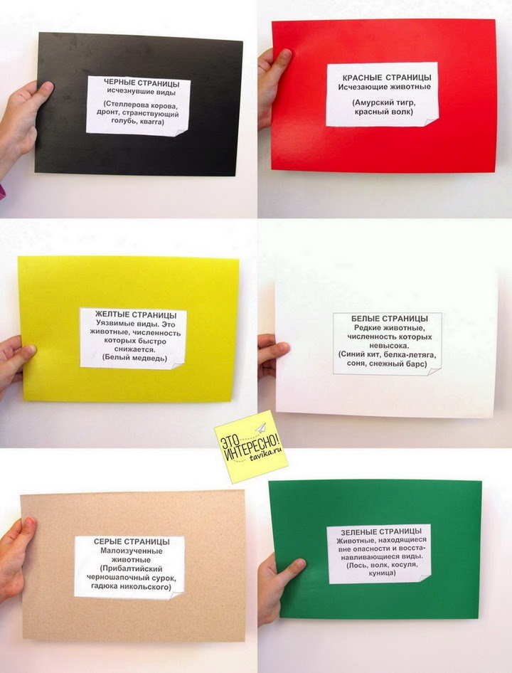 Как сделать красную книгу фото 679
