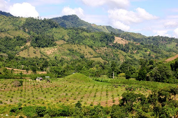 AJASSPIB, Pico Bonito, Olanchito,Honduras