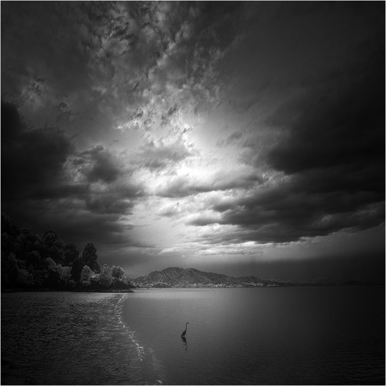Emerging Photographers, Best Photo of the Day in Emphoka by Nathan Wirth, https://flic.kr/p/xFvXw1