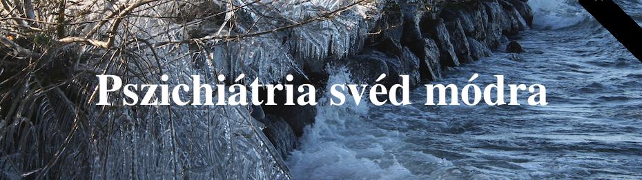 Pszichiátria svéd módra