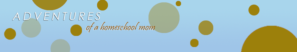 Adventures of a Homeschool Mom