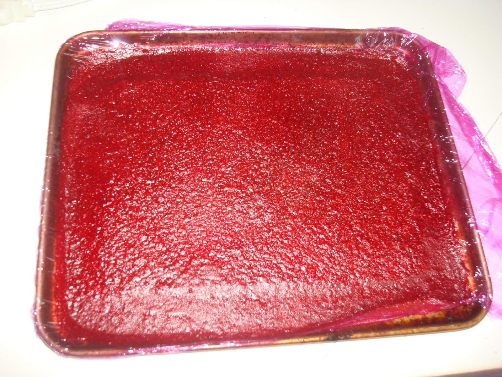Just Keep Cooking: Strawberry Rhubarb Fruit Leather