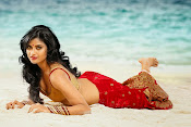 Devayani hot portfolio photos-thumbnail-1