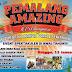 Pemalang Amazing Extravaganza Hari Jadi Kabupaten Pemalang Ke-440