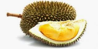 5 manfaat buah durian bagi tubuh