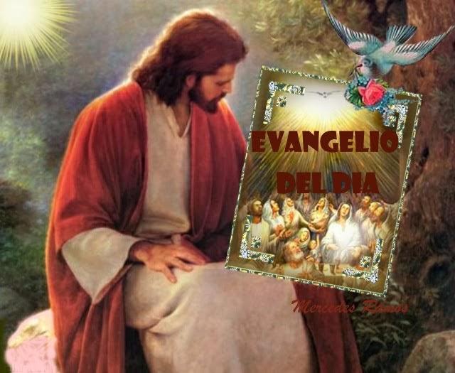 (PULSA) EVANGELIO DEL DÍA