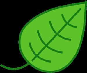 Manfaat Penting Klorofil untuk Kesehatan