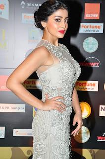 Actress Shriya Saran Stills in Designer Dress at IIFA Utsavam Awards 2016 Day 2   (74)