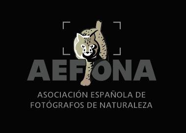 Miembro de AEFONA