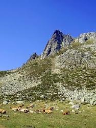 Aller Asturias