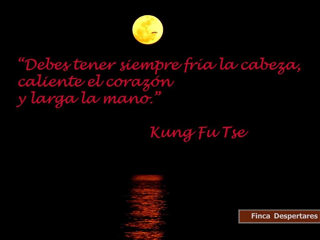 Finca Despertares - Kung Fu Tse