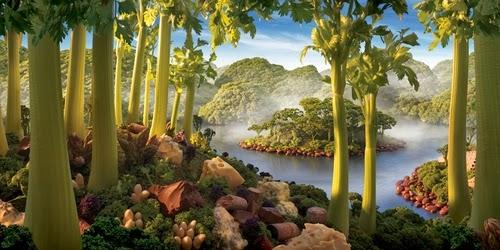 18-Celery-Island-Foodscapes-British-Photographer-Carl-Warner-Food- Vegetables-Fruit-Meat-www-designstack-co