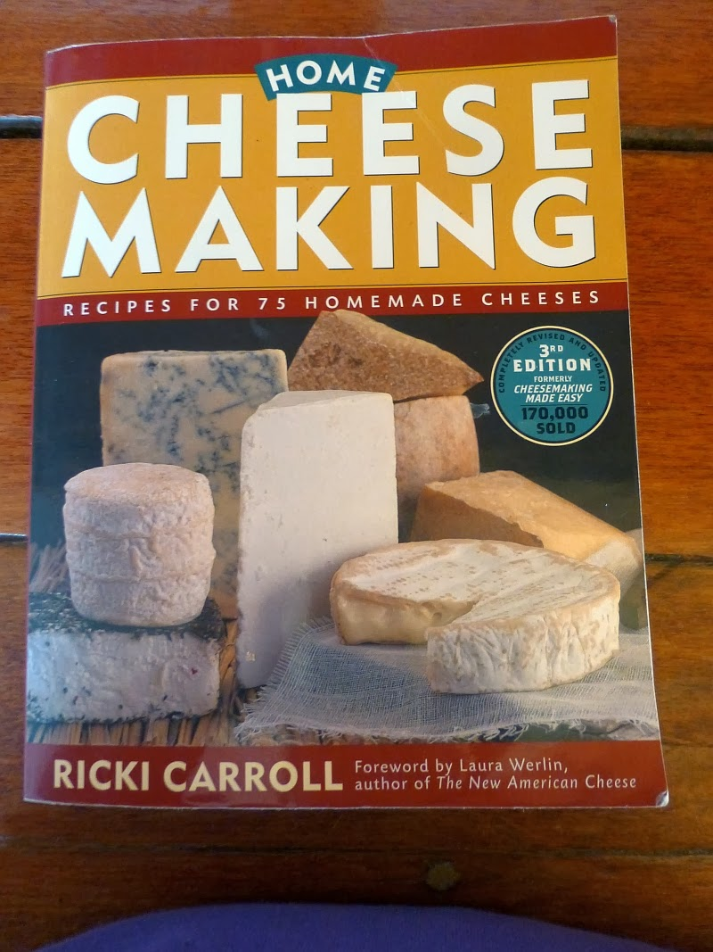 Background information on which cheese gets the most mold? tips and websites please?