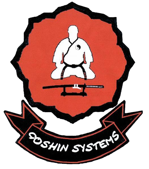 C.D. Goshin Systems Castellon