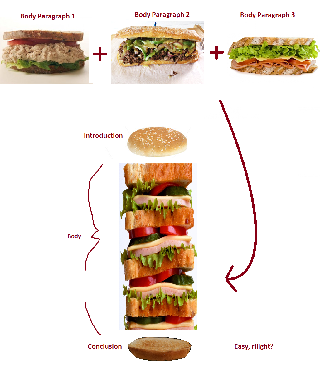 how to write an english essay sanctuary of synonyms holding these sandwiches together are your introduction bottom half of burger bun and conclusion top half of burger bun