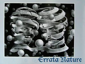 Errata Nature