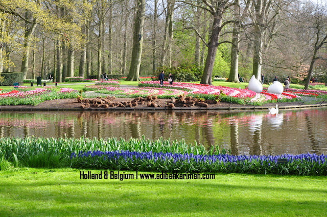 holiday to holland and belgium with premium beautiful at keukenhof tulips park bhg 3