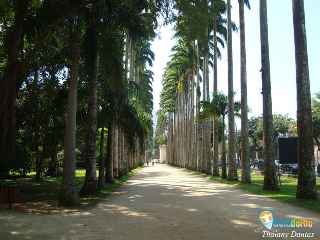 fotos jardim botanico do rio de janeiro:Jardim Botânico Rio de Janeiro dicas para aproveitar melhor – Guia do