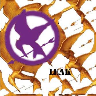 Hunger Games Leak