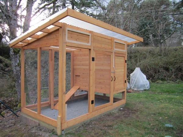The pitty pat pages chicken coop plans for Simple chicken coop plans for 6 chickens