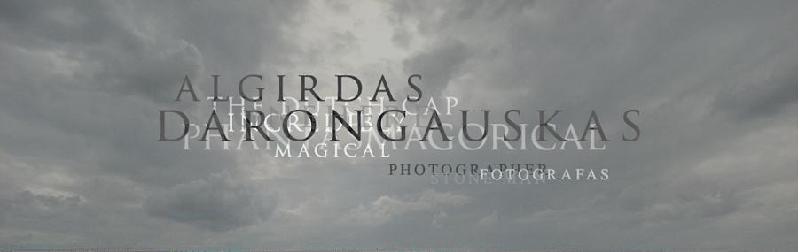 ALGIRDAS DARONGAUSKAS photographer