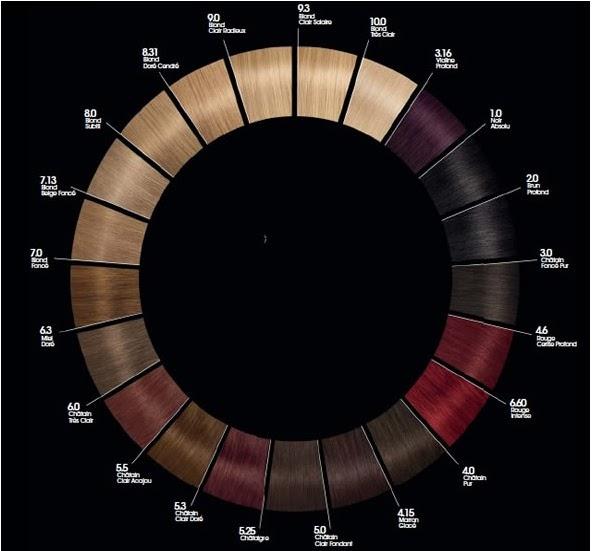 revue coloration olia de garnier zelias makeup book - Coloration Leclerc