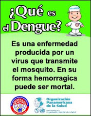 QUE ES EL DENGUE?