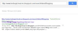 Tampilan jika label anda sudah terindex oleh google