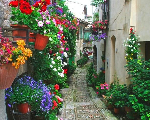 Um caminho flores flores e mais flores for Fachadas de casas modernas en italia