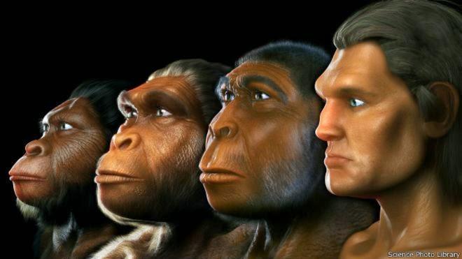 Quinze mudanças que nos fizeram humanos