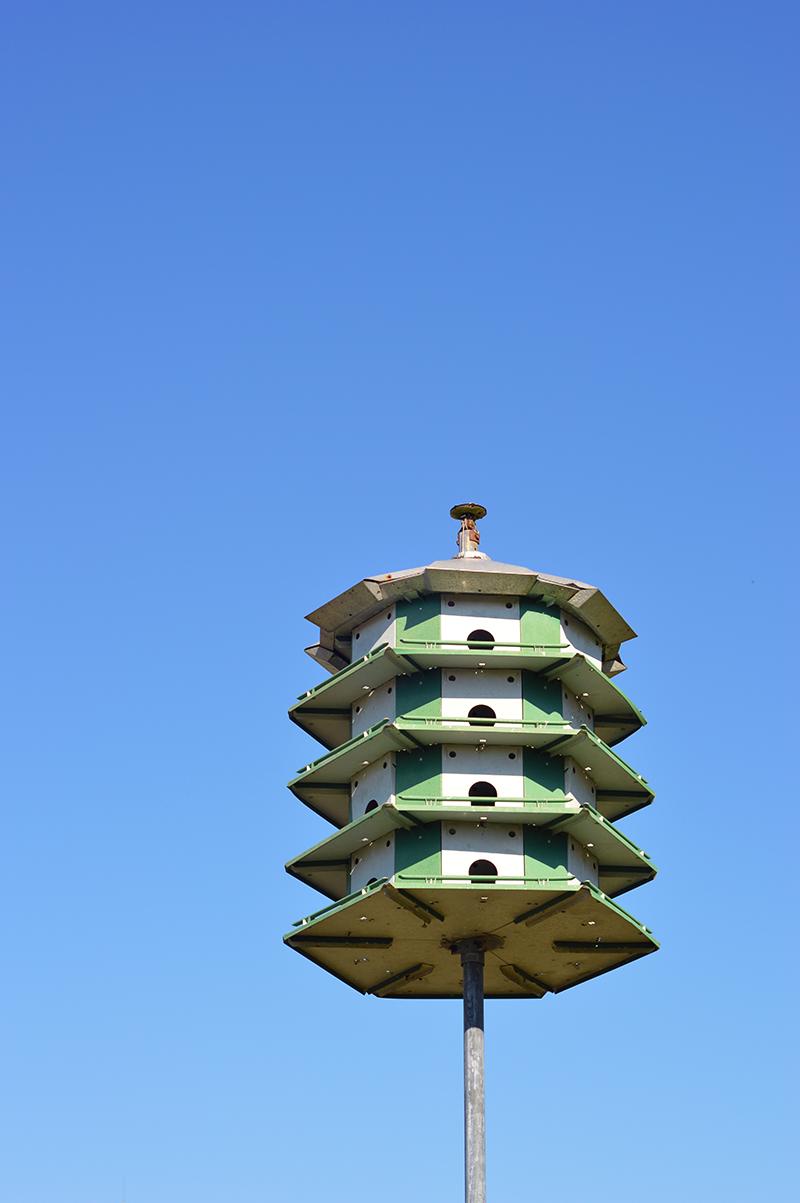 bird house more like a bird hotel