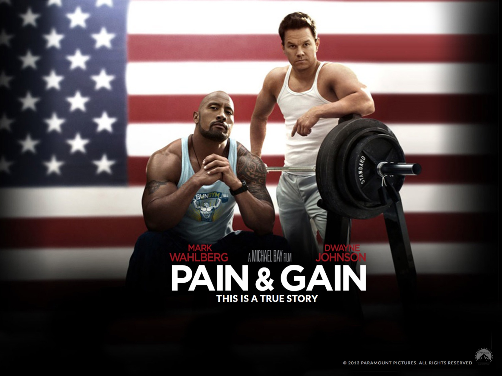 Pain and Gain movie Download