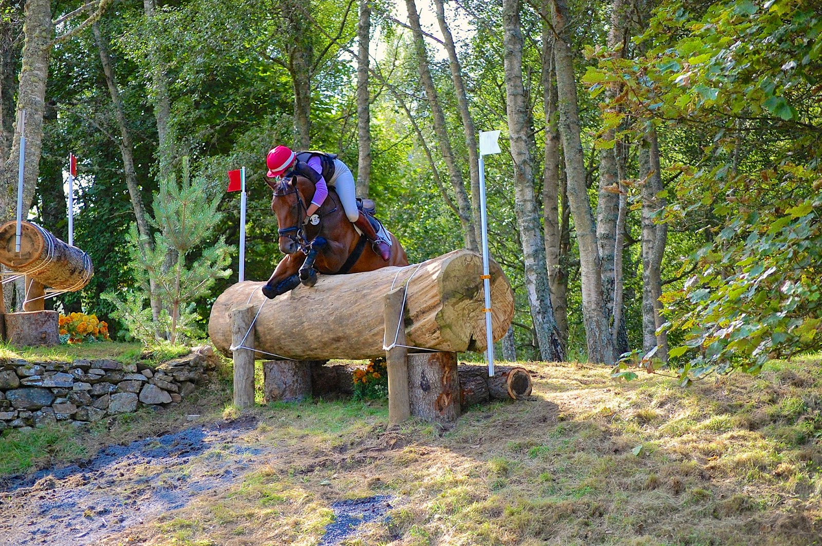 Blair Castle International Horse Trials; horse crash 4