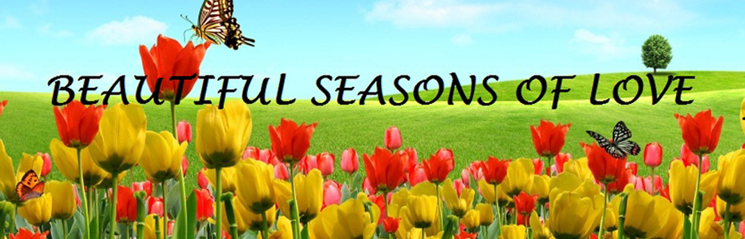 Beautiful Seasons of Love