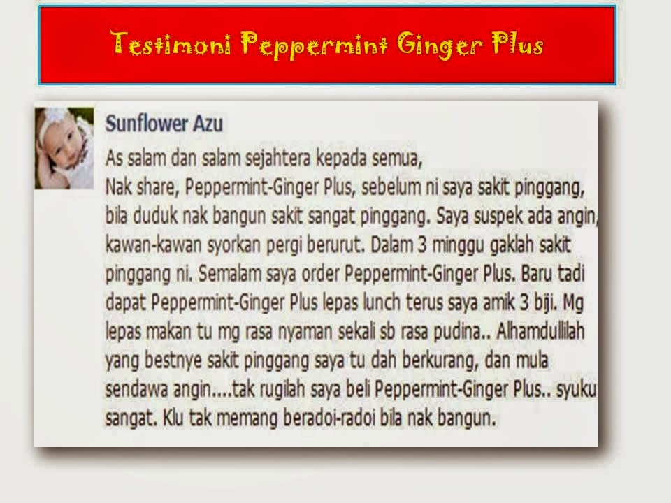 testimoni peppermint ginger plus