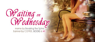 Waiting on Wednesday: Timekeeper by Alexandra Monir