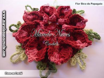 Flor Bico de Papagaio