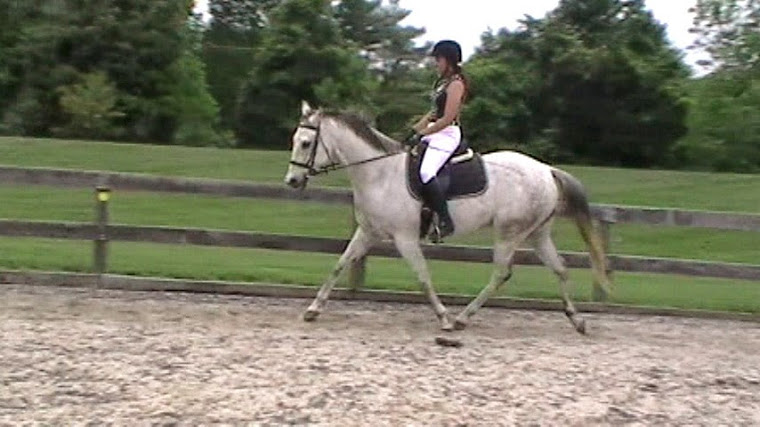 Miss Jean and Markus at a Dressage Clinic